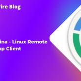 Remmina - Linux Remote Desktop Client